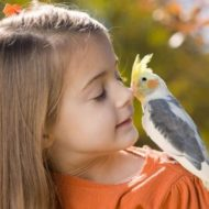 Какое животное завести для ребенка?